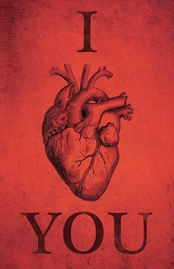 i anatomically heart you