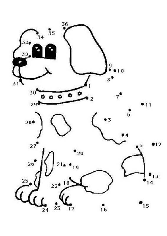 hond 1-36