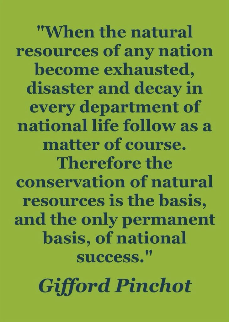 - Gifford Pinchot (the first Chief of the U.S. Forest Service). The health of its citizens is one of the vital natural resources that nations should not allow corporate polluters to squander. #conservation #environment #quotation