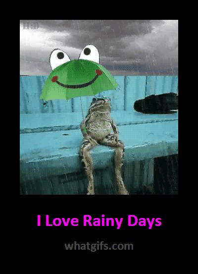 Funny Rainy Day Meme : Images about weather memes and activities on