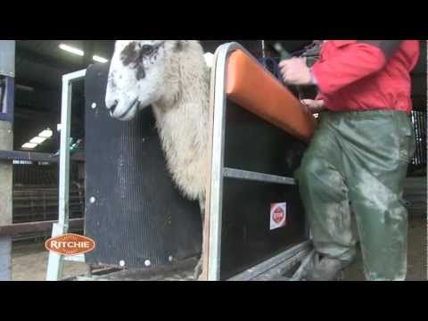 Exmoor farmer tells us his views on the Ritchie Combi Clamp!