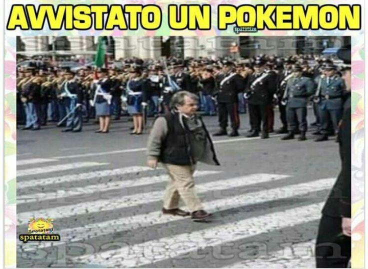 Avvistato un Pokémon