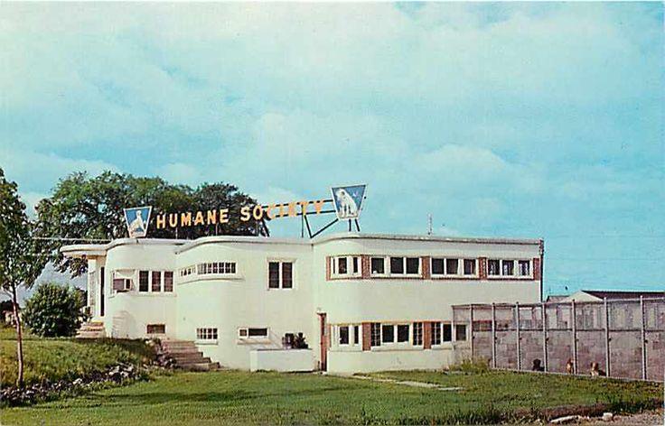NY, Rochester, New York, Lollypop Farm Humane Society, 1960s