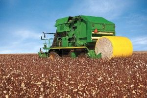 AGRICULTURE STATISTICS: COTTON GINNING REPORT FOR 2012