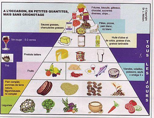 """Résultat de recherche d'images pour """"schema nutrition enfant"""""""