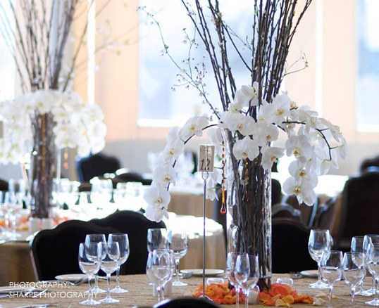 White cascading orchid centerpiece.  Visual Impact Design ~ Contemporary wedding flowers. Sharpe Photography.