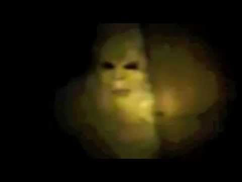 Real Bigfoot Sighting.  SHOCKING VIDEO FILMED BY AN UPSTATE NEW YORK MAN WHO CLAIMS TO HAVE FOUND A BIGFOOT