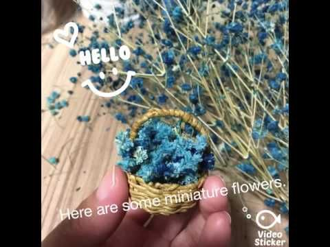 Miniature flowers - YouTube