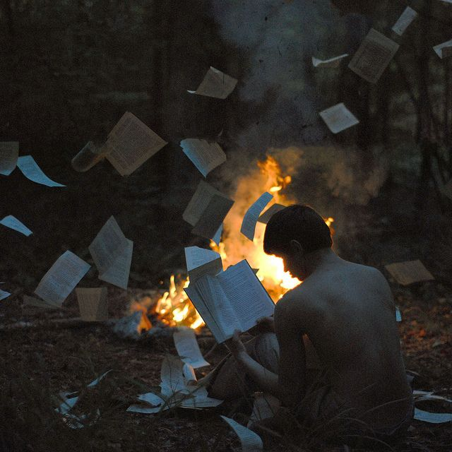 """He sat, lost in his own world as the loose pages fluttered around him, some falling into the fire that illuminated the mud-stained pages he read. The words dancing in his mind as his air element unlocked, creating a light wind that picked up the papers and swirled angrily around him."""
