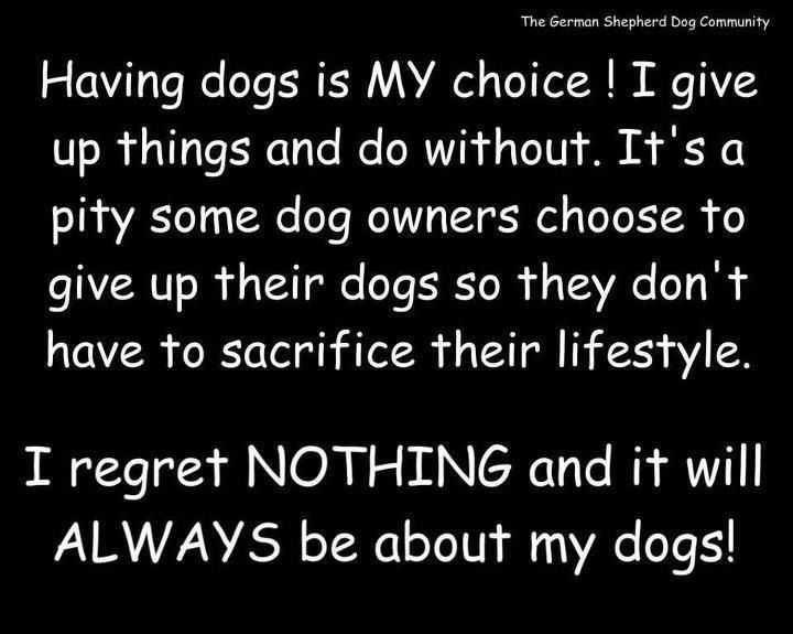 shame to you people who have your dogs kenneled up all day, and left outside, or the ruthless people who give away their animals for an excuse not a reason