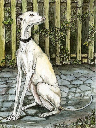 Beautiful print. https://www.etsy.com/listing/168174582/the-never-ending-friendship-greyhound?ref=sr_gallery_42&ga_search_query=greyhounds&ga_page=21&ga_search_type=all&ga_view_type=gallery