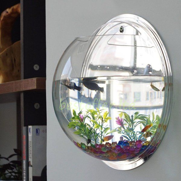Fish bowl wall mount betta 1 gallon tank aquarium for Betta fish bowl ideas