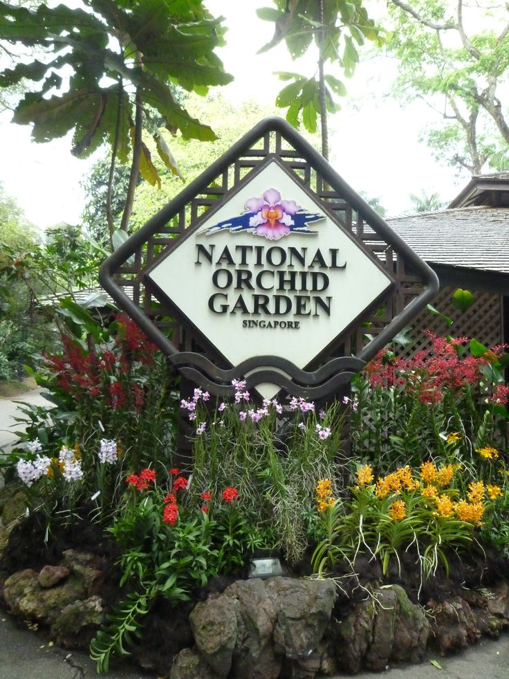 national orchid garden at Singapore