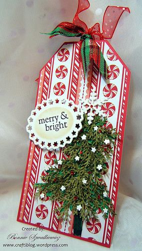 This past weekend I worked on a Christmas tag swap. I had extra's cut out so I made a 2nd tag. This one using the same DP and ribbons then I added some additional items to change it up. The b…