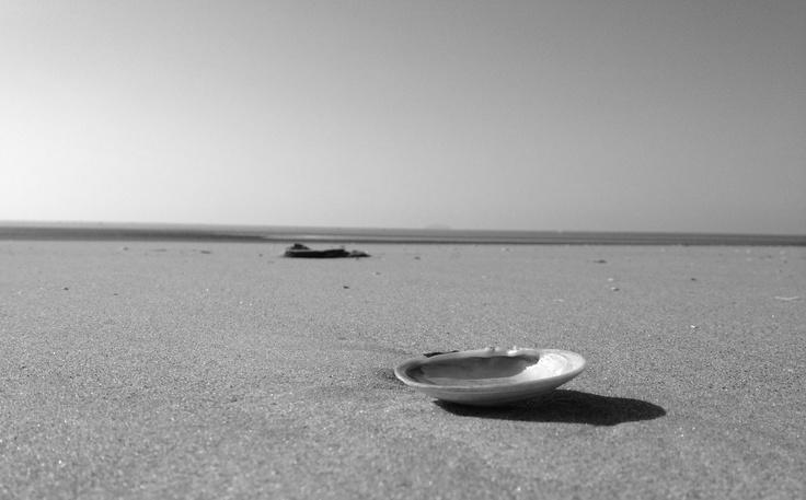 안면도 해변..