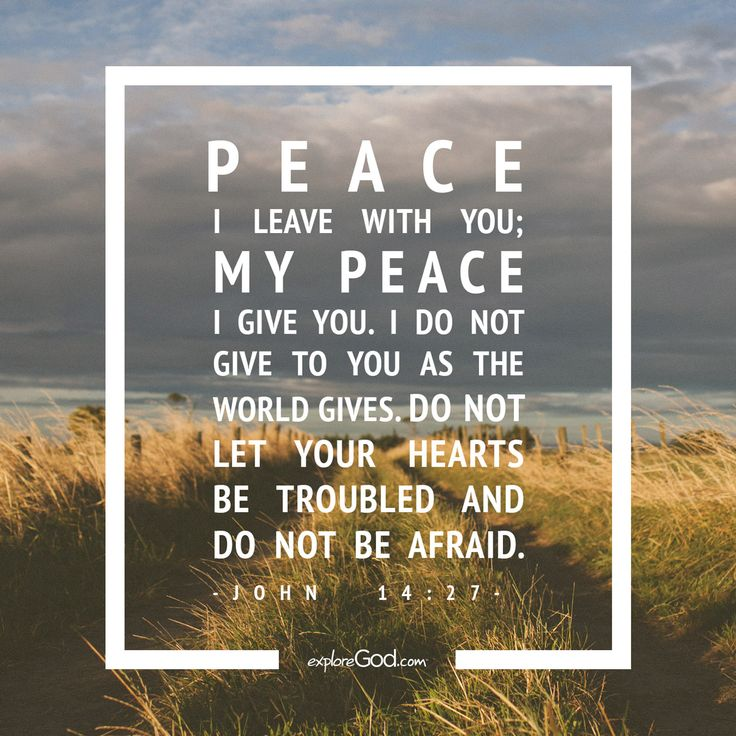 Peace I leave with you; my peace I give you. I do not give to you as the world gives. Do not let your hearts be troubled and do not be afraid. - John 14:27