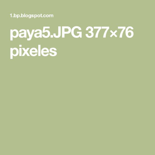 paya5.JPG 377×76 pixeles