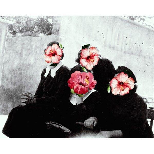 Sisters - Sisters Series