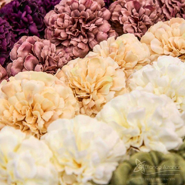 """116 Me gusta, 1 comentarios - Blanco Azahar (@blancoazahar) en Instagram: """"🌸 Nuevos #Claveles de temporada en una gran gama de #colores que encontrarás en #BlancoAzahar. ¡Se…"""""""