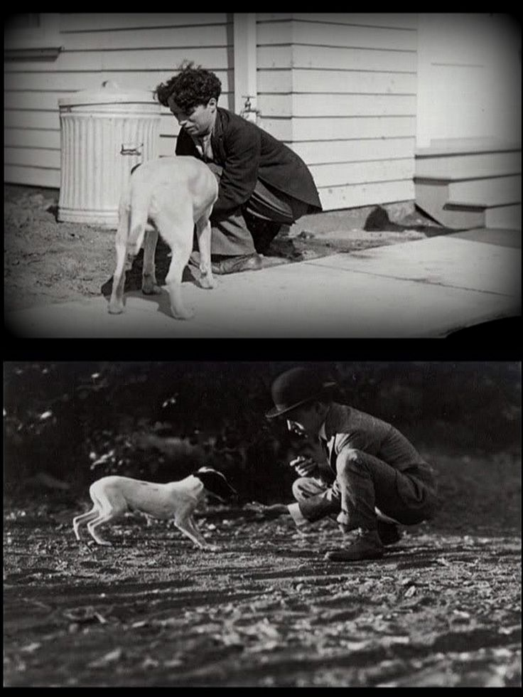 the life and works of charlie chaplin All of chaplin's works display the physical grace, ability to express feeling, and intellectual vision possessed by the finest actors a film about chaplin's life, titled chaplin, was released in 1992.