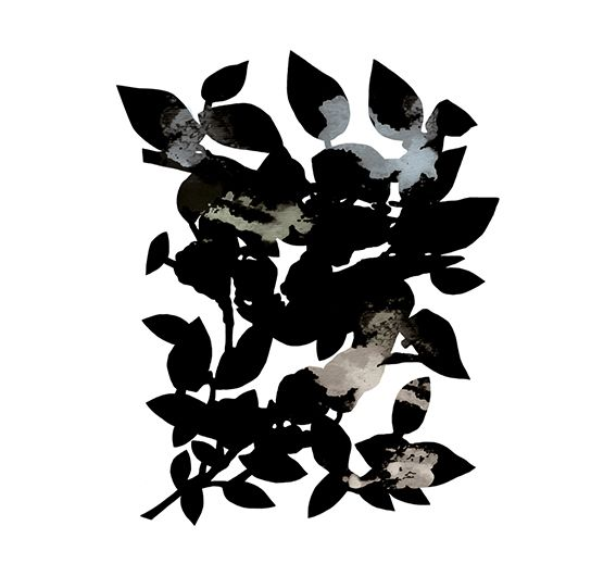 'A bunch of leaves' // By Sylvia Takken