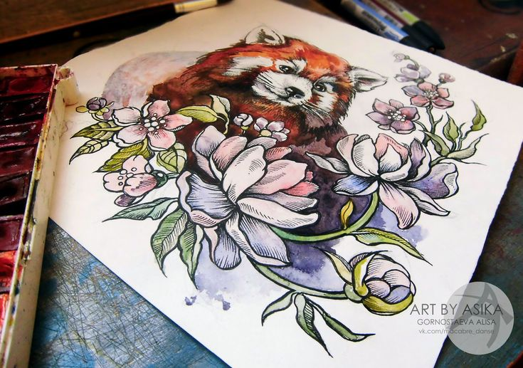 Red panda. Tattoo flash, watercolor. by AsikaArt
