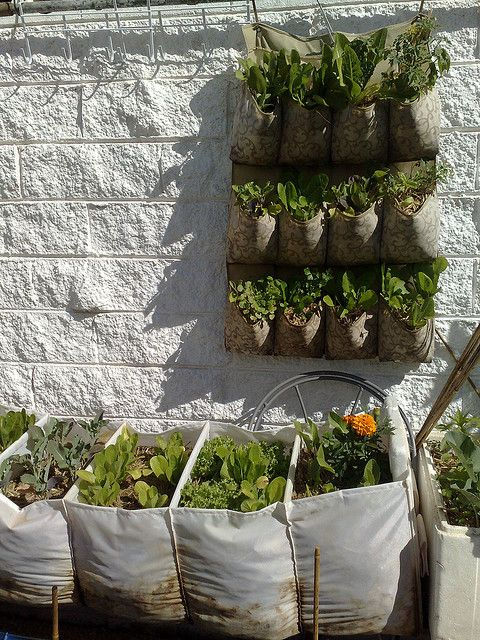 Vertical Garden Sept Best Landscape Fabric Gardens And