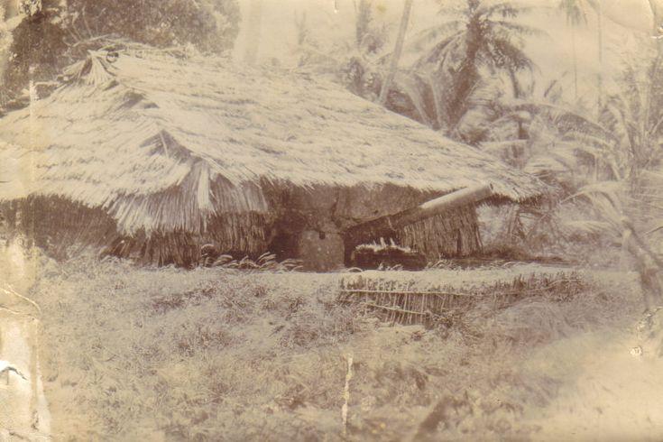 German East Africa -- hidden artillery piece, World War 1