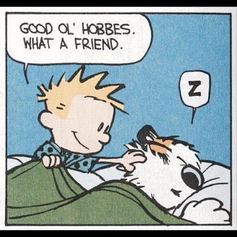Calvin and Hobbes - Good ol' Hobbes...