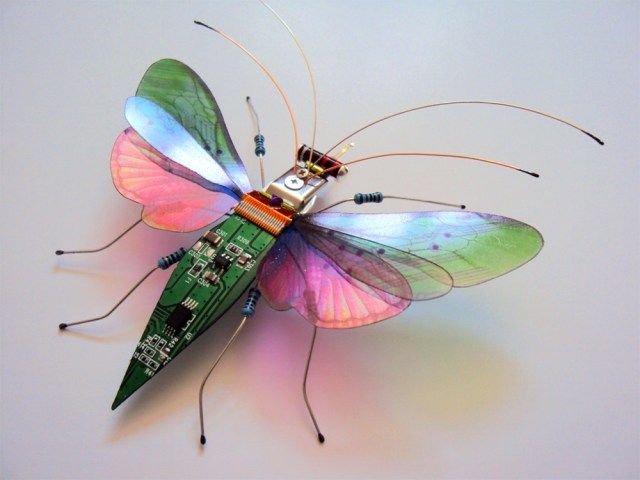 insectos piezas electronicas Julie Alice Chappell 3