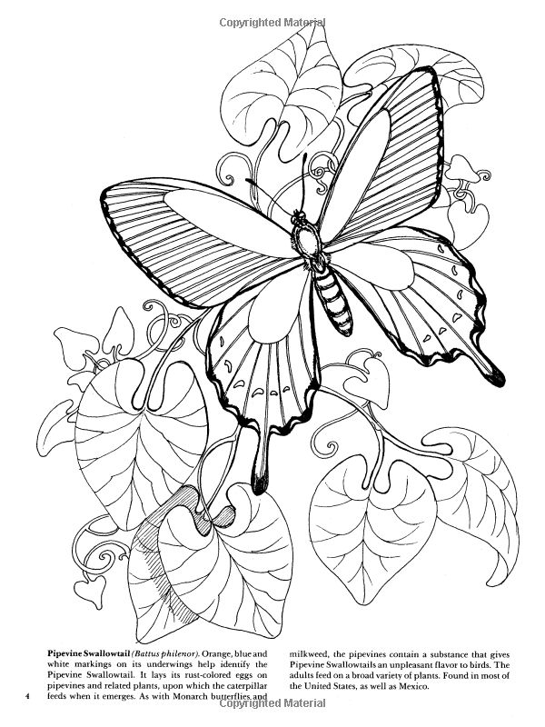 17 best images about doodles  clip art  etc  to embroider on pinterest