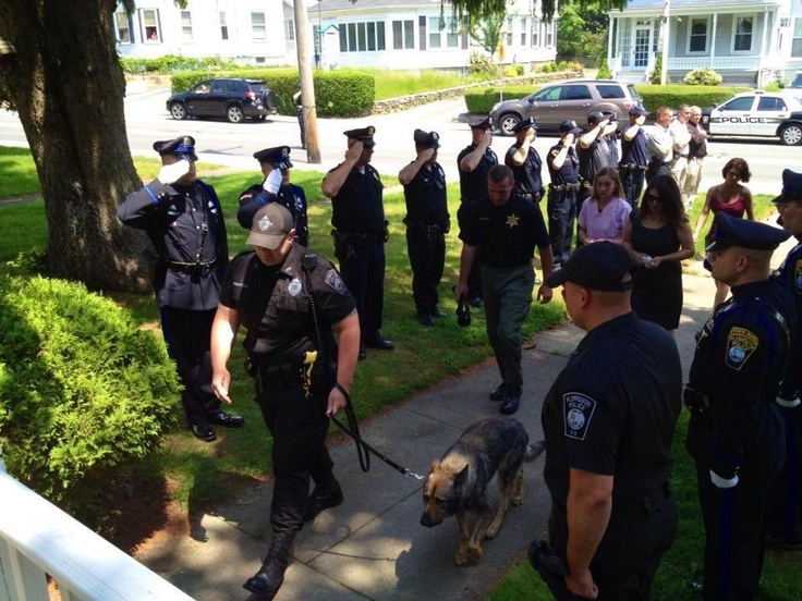 A police dog honored by a salute on his last run.: Health Problems, Police Offices, Finals, Walks, Kidney Disease, Pet, German Shepherd, Police Dogs, Animal