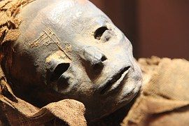Mummy, Museum, Egyptian, Egypt, Ancient
