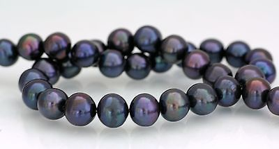 Echte Perlenketten kaufen | eBay