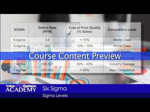 Course Preview: Understanding and Applications of Six Sigma & Lean Six S...
