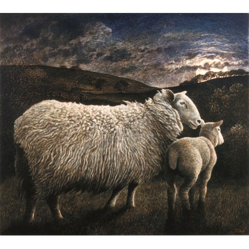 Ewe And Lamb By Moonlight – James Lynch
