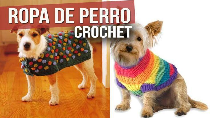 Ropa Para Perro Tejida a Crochet ( ideas y Diseños )                                                                                                                                                                                 Más