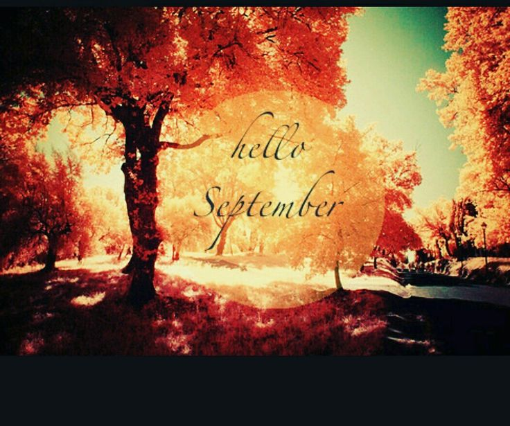 Hello September!!! A new month is before us, an old one left 👈 behind. The only wish I have for you, is that September is kind! Wishing all my family 👪 and friends a wonderful month ahead!! 😘😘😘 #tonahlmillerwraps #helloseptember #september #bekind #newmonth #newday #newopportunities #autumn #leaveschanging #leavesfalling