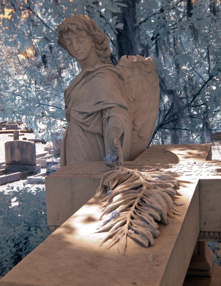 Bonaventure Cemetery in Savannah photo by Dick Bjornseth
