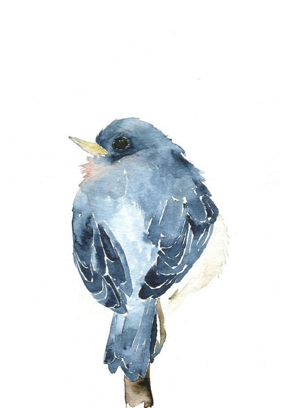 Watercolor Birds Artwork Little Blue Bird by dearpumpernickel
