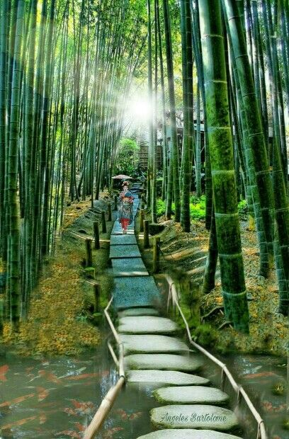 Japón Tokyo Tenjuan Garden