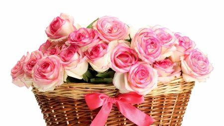 Roses - valentine, mother, white, rose, pink, bow, basket, day, flower