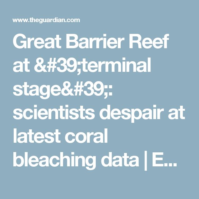 Great Barrier Reef at 'terminal stage': scientists despair at latest coral bleaching data | Environment | The Guardian So build your fuxking great coalmine Barnaby Joyce you fucking corrupt cowardly bastard. Might as well fuck the whole reef; you, Hunt, the Labor party and your spineless mates in Parliament.
