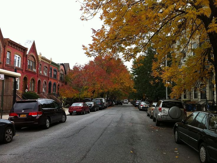 Brooklyn apartment rental - Located on a quiet treelined street with residential parking