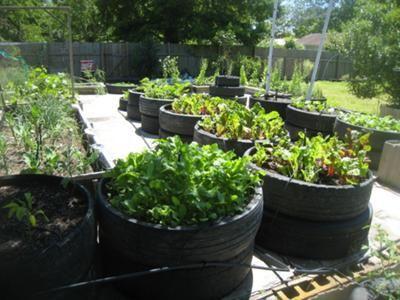Best 20+ Tire garden ideas on Pinterest Tire planters, Tires - container garden design ideas