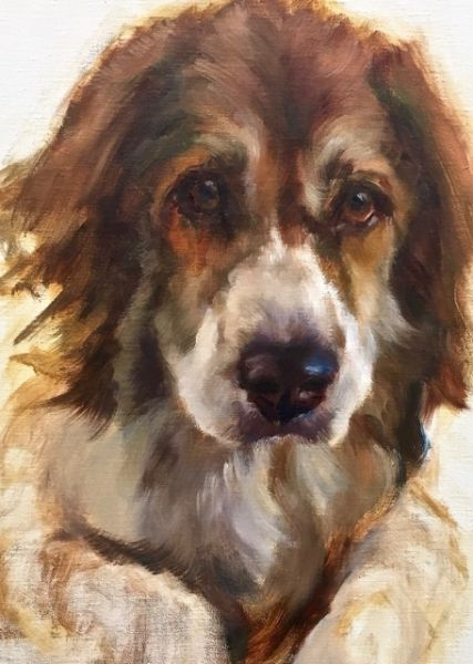 """Dog Portrait Sequential 1, Johanne Mangi"""