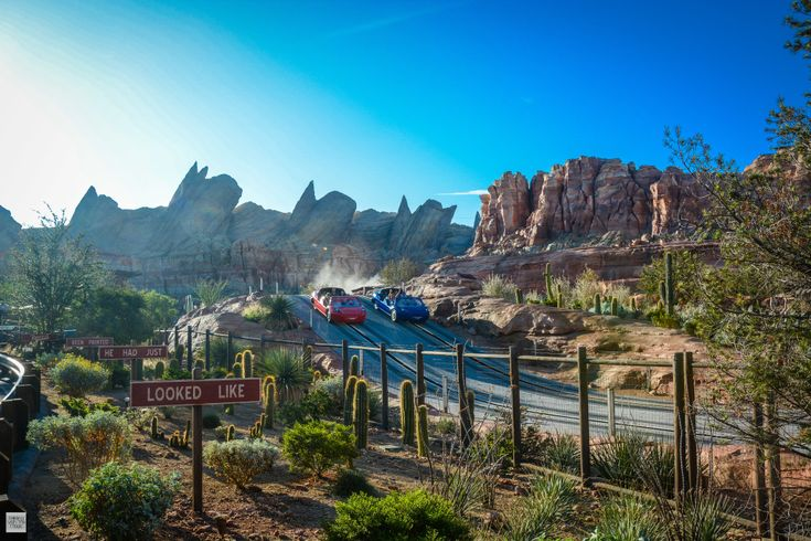 Accessible Attractions | Radiator Springs Racers