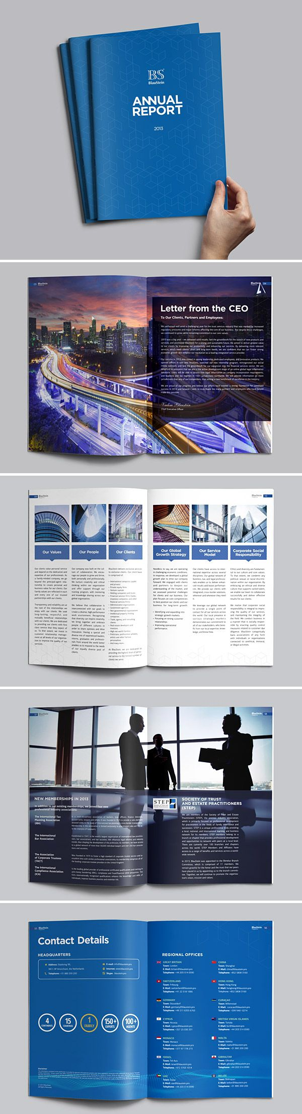 blue annual report brochure