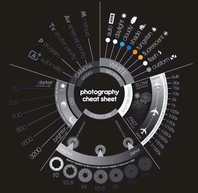 Cola de fotografia