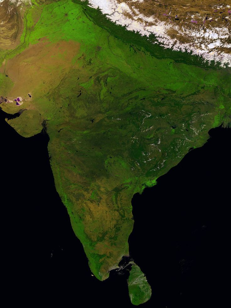 Best Views of Earth From Europe's New Plant-Mapping Minisatellite | India from Sri Lanka to the Himalayas, taken by Proba-V on March 14, 2014.  ESA/VITO  | WIRED.com